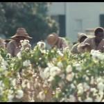 12 anni schiavo: Steve McQueen e la potenza della storia americana