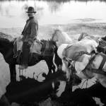 4-buttero-a-cavallo-agro-pontino-1931_Musiculturaonline[2]