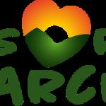 logo-risorgimarche Musiculturaonline