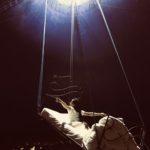 Gran Circo Rossini Musiculturaonline