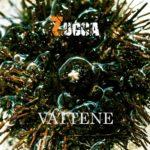 Zucca – Vattene Musiculturaonline