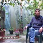 Michela Lambriola Musiculturaonline