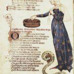 LAcerba-immagine-dellAvarizia-Manoscritto-Medico-Laurenziano-40-52