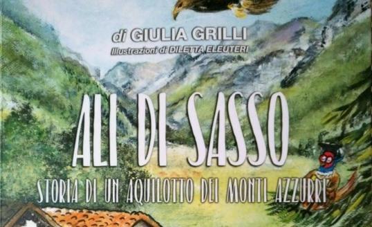 """""""Ali di sasso"""", l'ultimo libro di Giulia Grilli"""