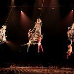 5.  Lucas Saporiti Chandelier Costumes Dominique Lemieux 2015 Cirque du Soleil Photo 2 Musiculturaonline