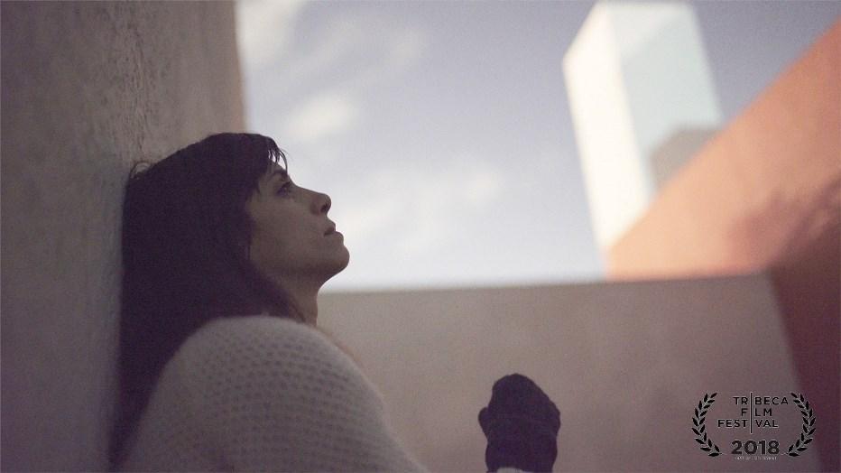 """""""Lo schermo dell'arte"""" Film Festival nel Teatrino di Palazzo Grassi a Venezia"""