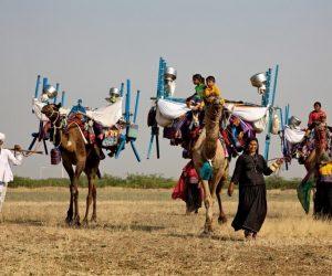 """""""Ancora in cammino"""" in migrazione con i pastori Rabari Vagadiya del Kutch"""